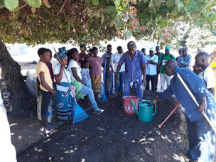 Catalisa: Inclusive Economic Growth with Agribusiness and Youth, Mozambique