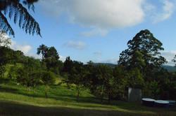 Ciesf Vista 3