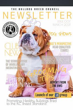 Copy of Trendy Regal Fashion Magazine Co
