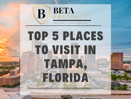 Top 5 Places to Visit in Tampa, Florida