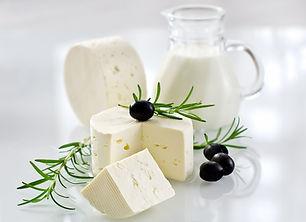 Paneer cheese on white background horizo