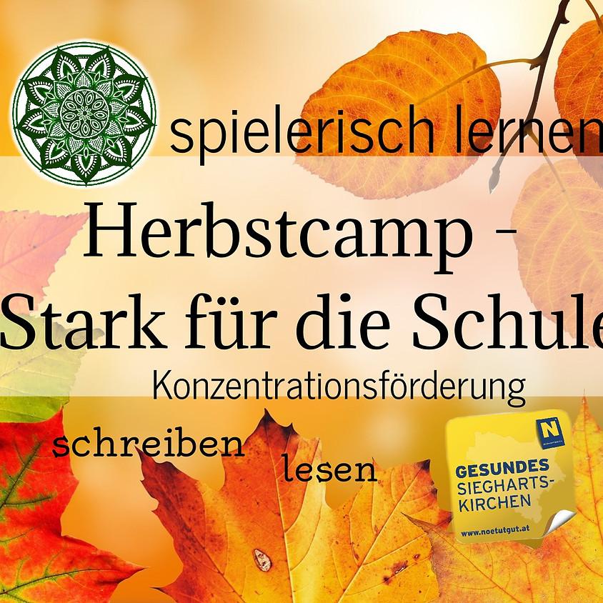 Herbstcamp - Stark für die Schule (1)
