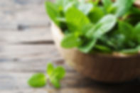 Green fresh mint om the wooden table, se
