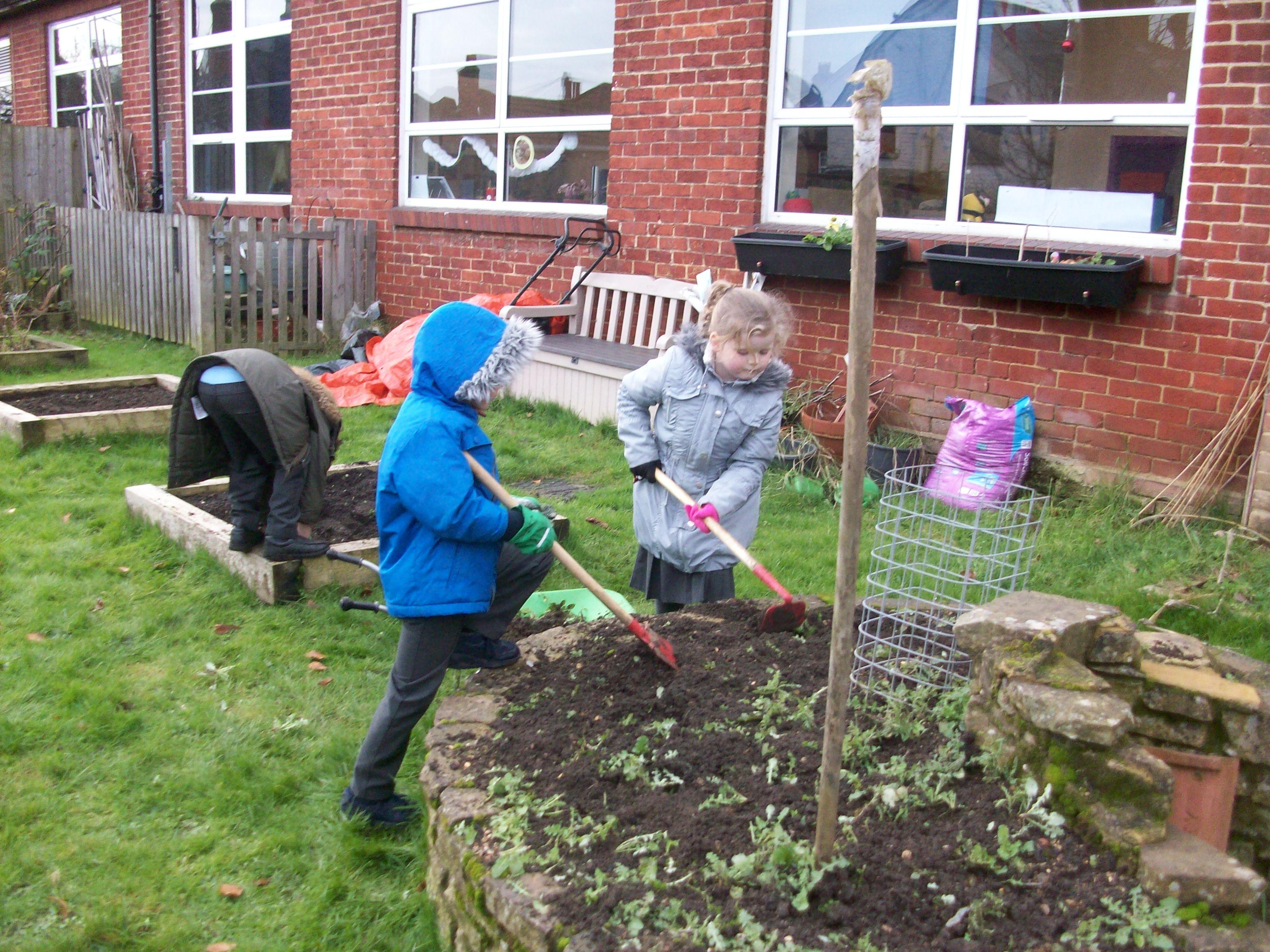 Allotment digging