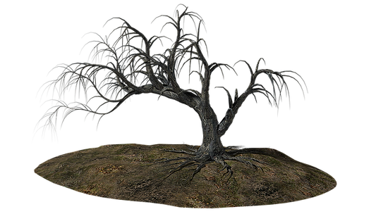 tree-1606491_640.png