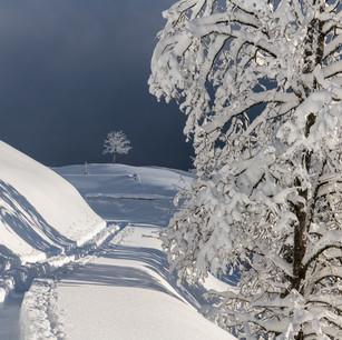 Obwalden29