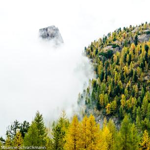 Südtirol12