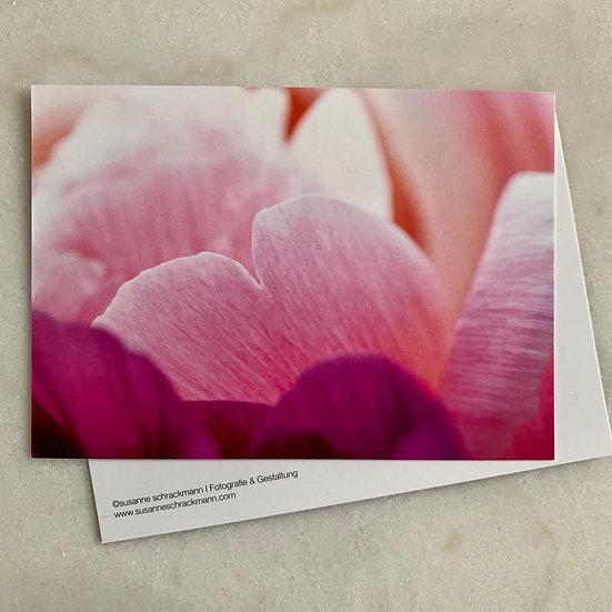 Postkarte 11