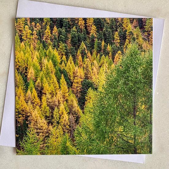 Postkarte mit Couvert