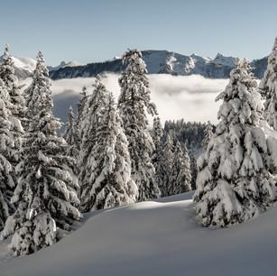 Obwalden31