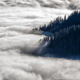 Landschaft7