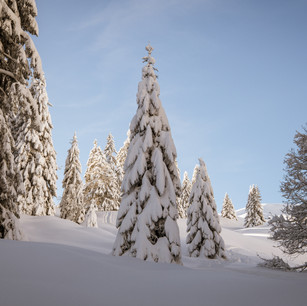 Obwalden28