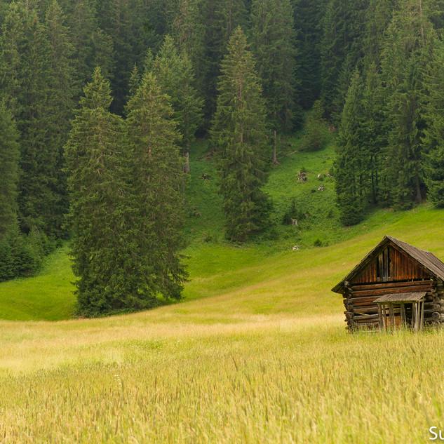 Südtirol14