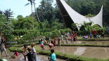 Green School: L'éco-éducation à l'honneur