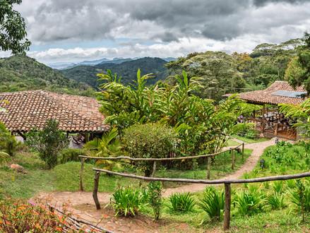 16) Nikaragua Kahvesinin Özellikleri