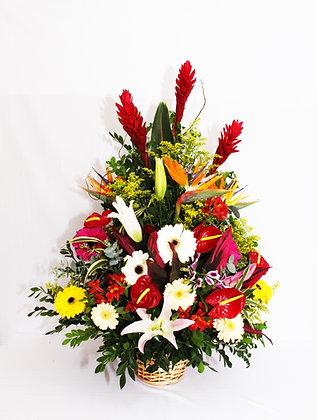Ikebana de Flores Finas e Tropicais