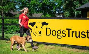 Dogs Trust Wetherby | Handpicked Wetherby