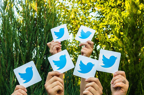 twitter networking.jpg