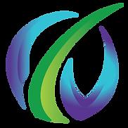 vanguardian global logo final .png