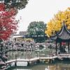 Lion Grove Garden