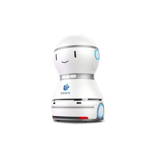 Hotelier Robot