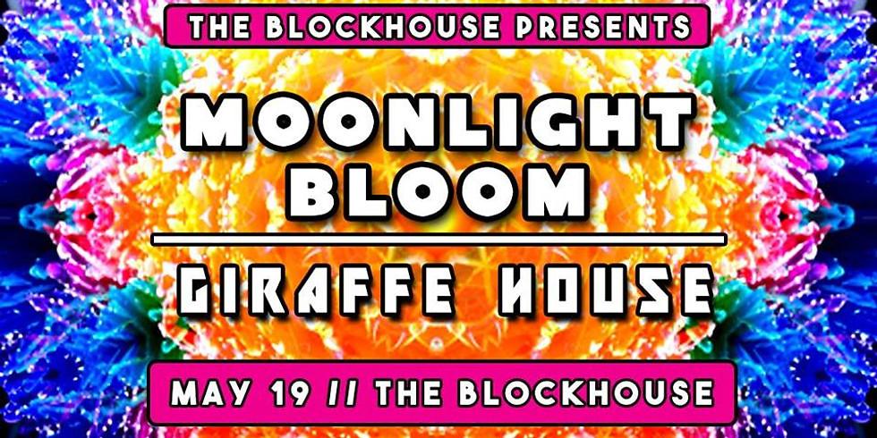 Moonlight Bloom & Giraffe House