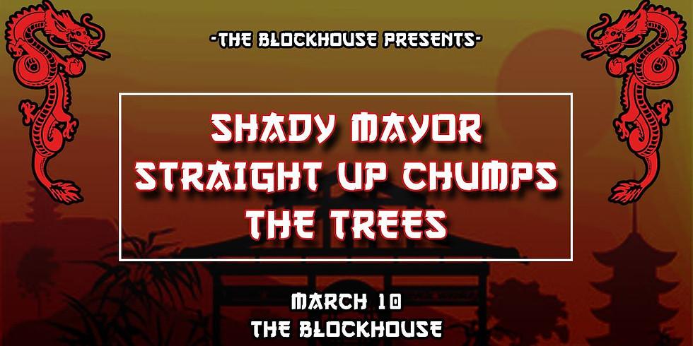 Shady Mayor // Straight Up Chumps // The Trees