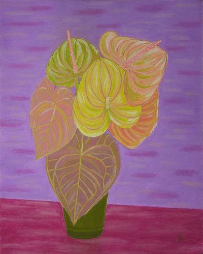 Plante en pot sur fond violet B 72 G - c
