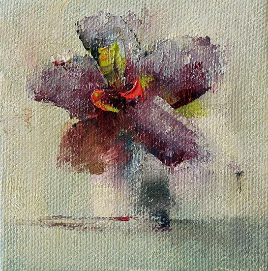 Petite Floret #27