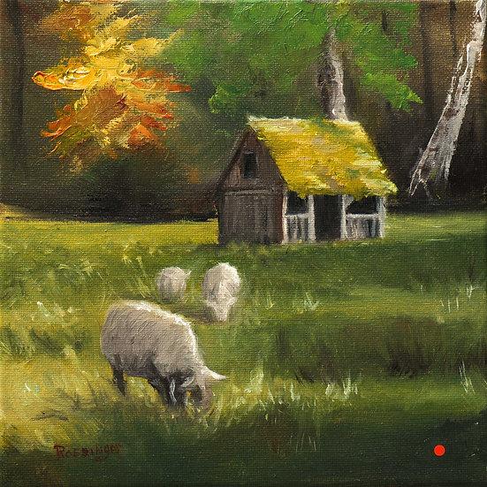 Cuttalossa Sheep Farm II