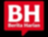 bh-logo.png