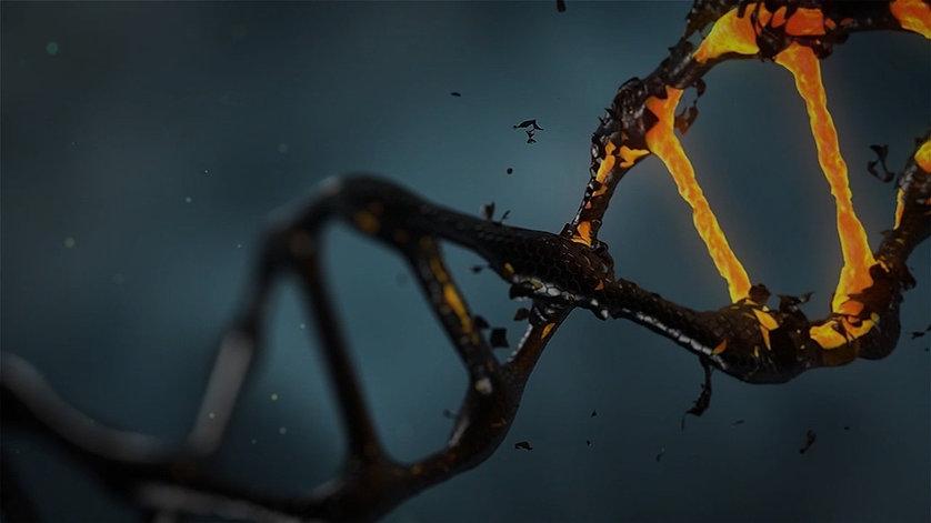 Epigenetik_Nutrigenetik.jpg