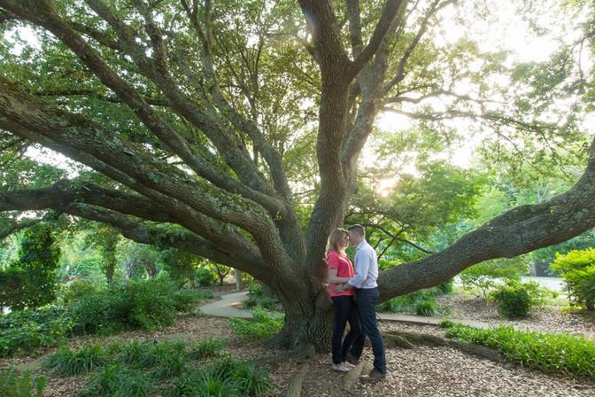 raulston_arboretum_02.jpg