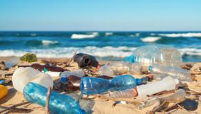 Biodégradable : trois idées pour se débarrasser du plastique !