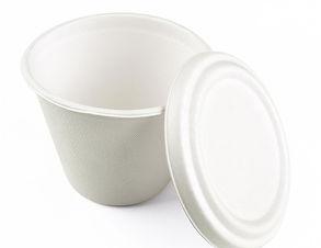 Bagasse-bowl.jpg