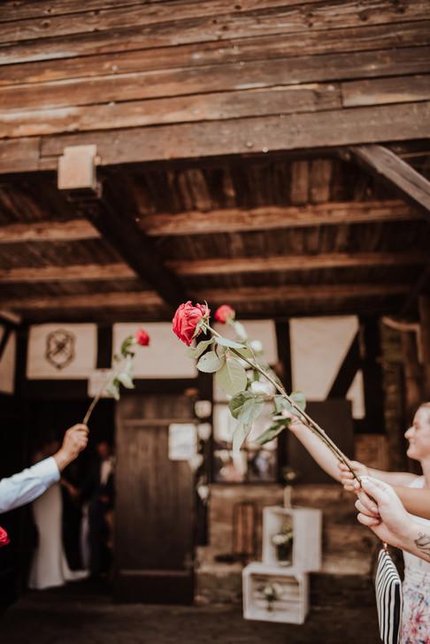 Hochzeit Bad Berleburg 2020-63.jpg