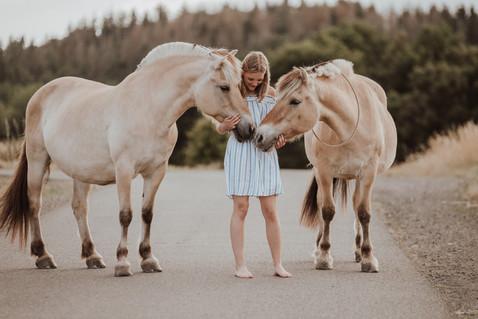 pferdeshootig dautphetal fjordpferd-26.j