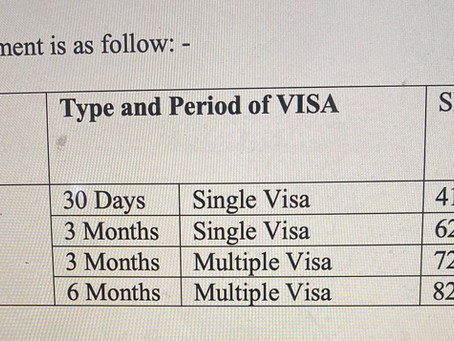 General Information about Visa Service