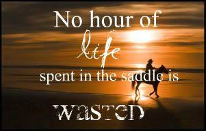 Tsitaadid hobustest ja ratsutamisest