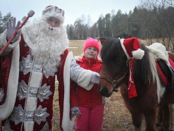 Ponid Jõulumaal!