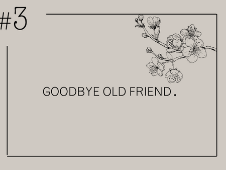Goodbye Old Friend.