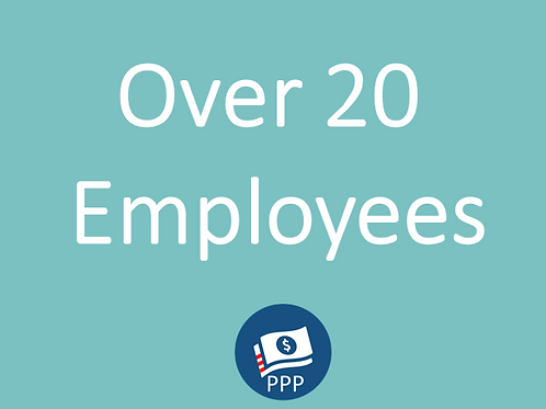 More than 20 Employees Basic Package / Price per Employee