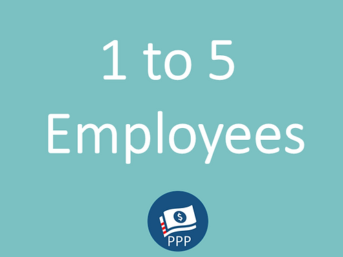 1 to 5 Employees Basic Package