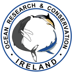 COM+ORCireland+logo+2.png