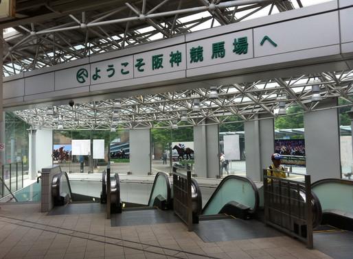 【馬場遊蹤】日本關西阪神競馬場
