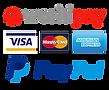 Worldpay Paypal