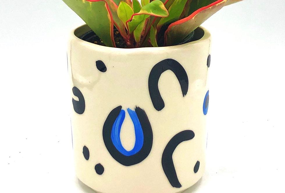 """The Blue Cheetah Pot  (4"""")"""