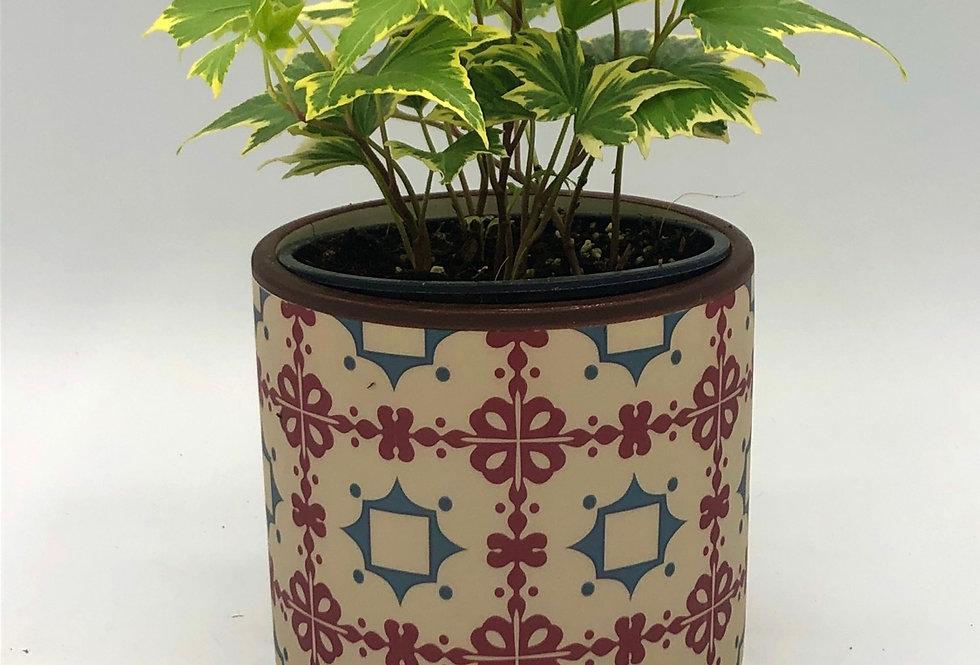 """Burgundy Mosaic Pot (4"""" Snug)"""