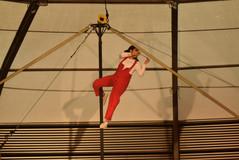 Biografía Pintada de un Circo