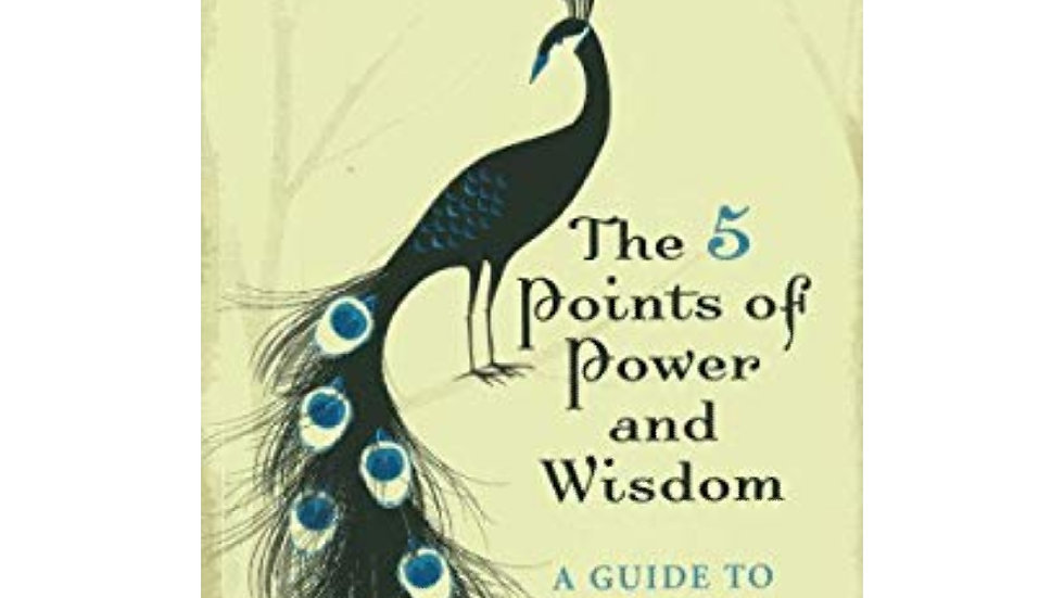 The 5 points of power and wisdom. (A guide to intuitive living) by Nicola Jayne